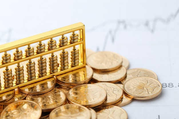 Application of Gold Loans