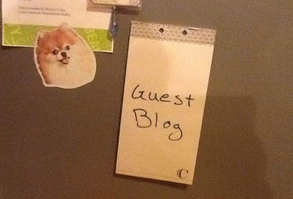 Some Common Pitfalls To Notice Before Guest Posting On A Website