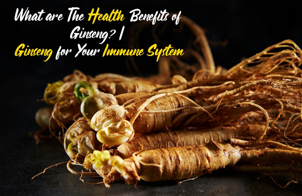 What are The Health Benefits of Ginseng?